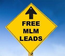 Free-MLM-Leads2